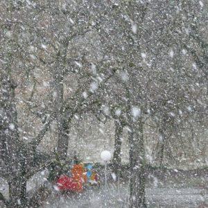 Снег, метель. Фото: pixabay.com.
