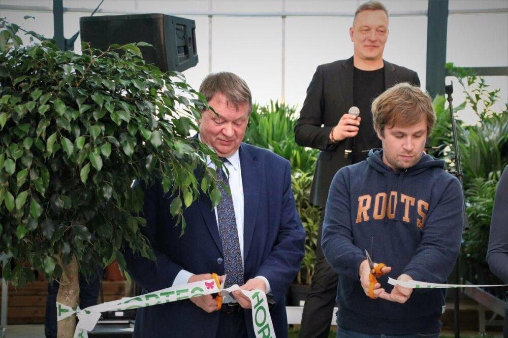 Фото: Lasnamäe linnaosavalitsus.