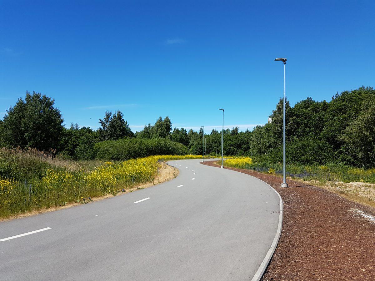 Так выглядел будущий парк Тондираба этим летом. Фото: Vitali Faktulin.